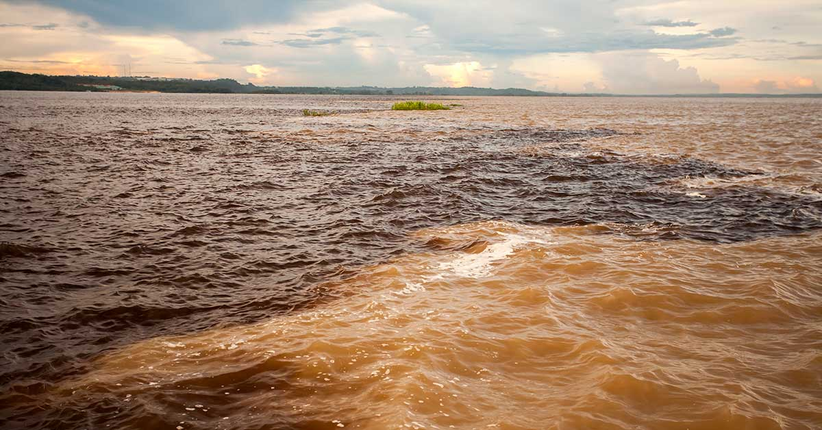 encontro das aguas amazonia